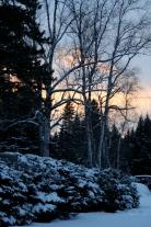 Mont Tremblant_versant Nord